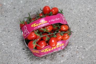 Datterini Extra Italien – Datteltomaten 1kg