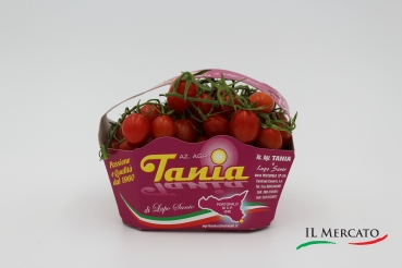 Datterini Extra Italien – Datteltomaten